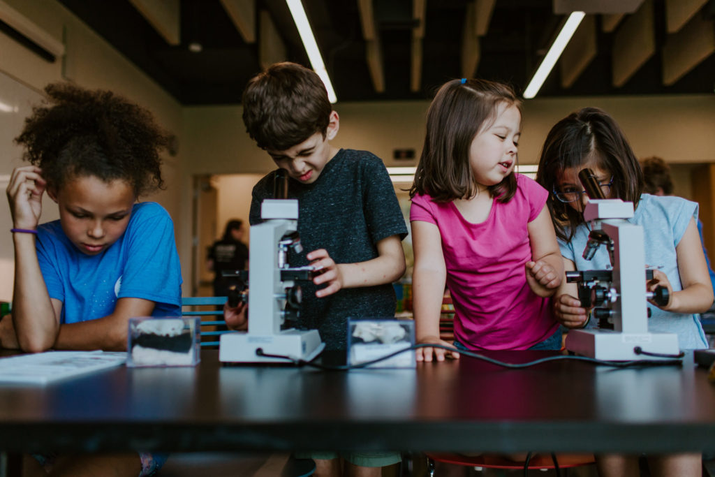 A group of children looking through microscopes