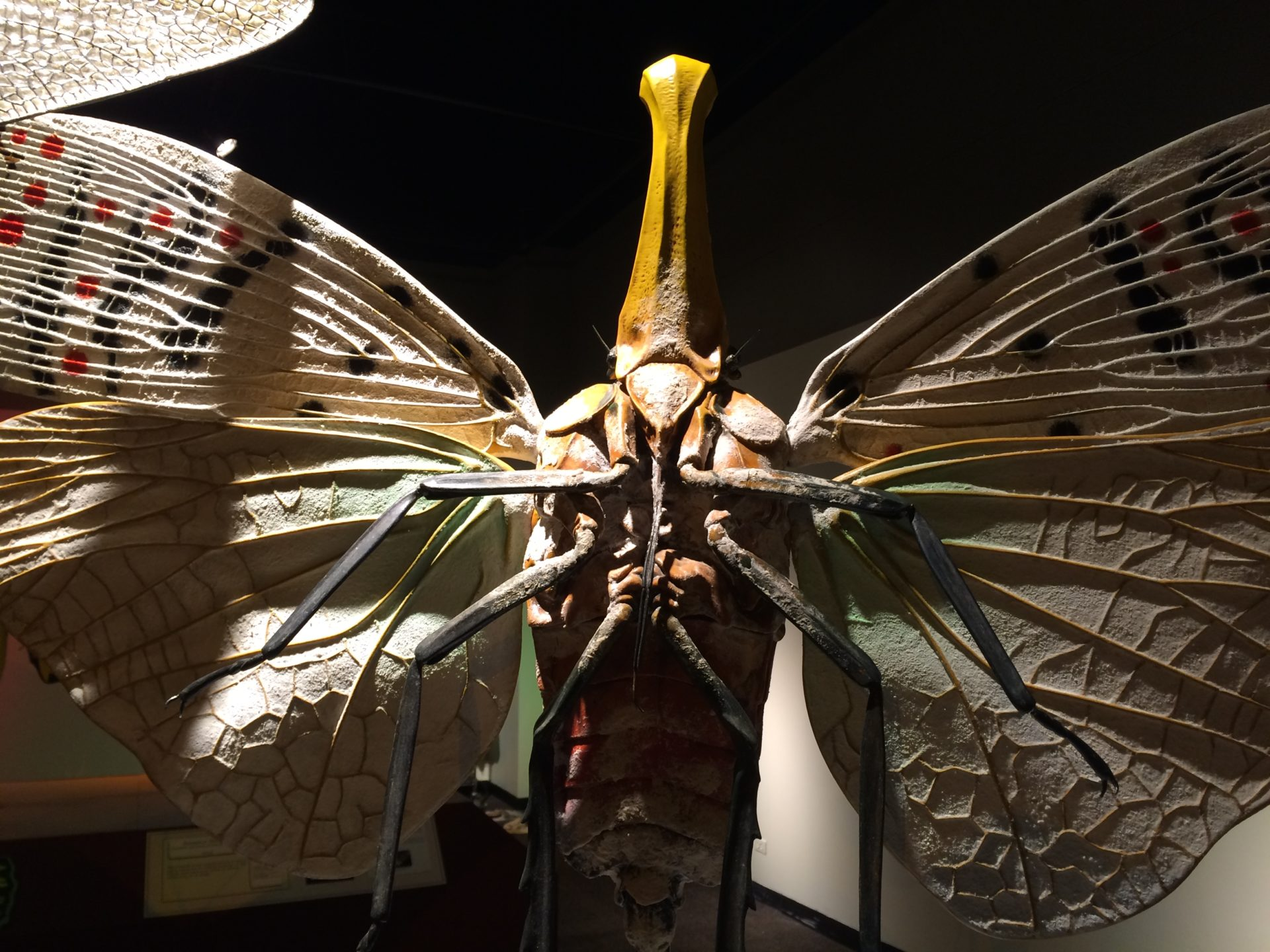 Closeup of LaternFly Sculpture showing wing details