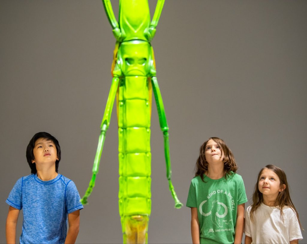 A group of kids looking at a bug sculpture in amazement