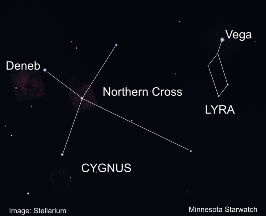 A diagram of the Cygnus, featuring Deneb and the Northern Cross