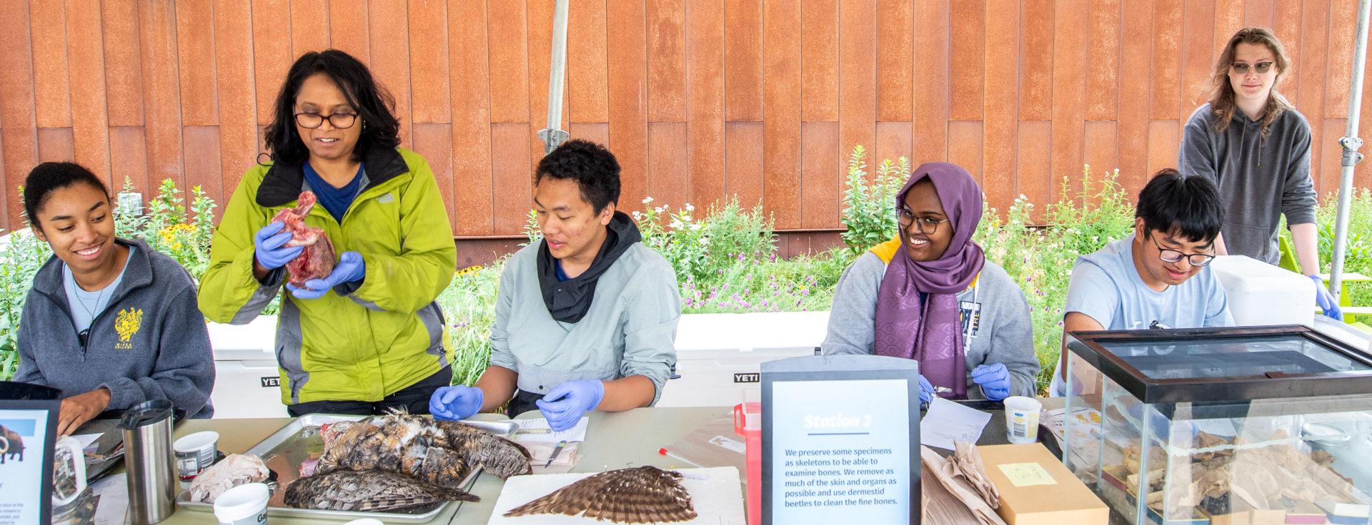 A group of high school interns, mentors, and scientists working together to prepare specimens
